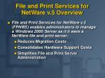 file and print services for netware v 5 overview