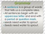 grammar11
