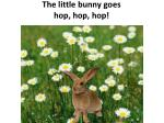 the little bunny goes hop hop hop1