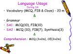language usage during sa