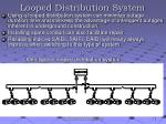 looped distribution system