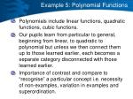 example 5 polynomial functions