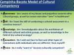 campinha bacote model of cultural competency