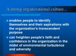a strong organizational culture