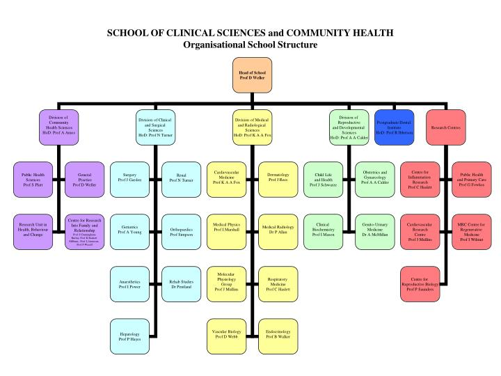 school of clinical sciences and community health organisational school structure n.