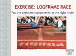 exercise logframe race