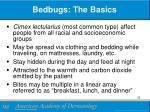 bedbugs the basics