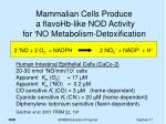 mammalian cells produce a flavohb like nod activity for no metabolism detoxification
