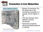 exsolution in iron meteorites