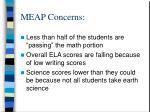 meap concerns