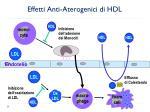 effetti anti aterogenici di hdl