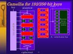 camellia for 192 256 bit keys