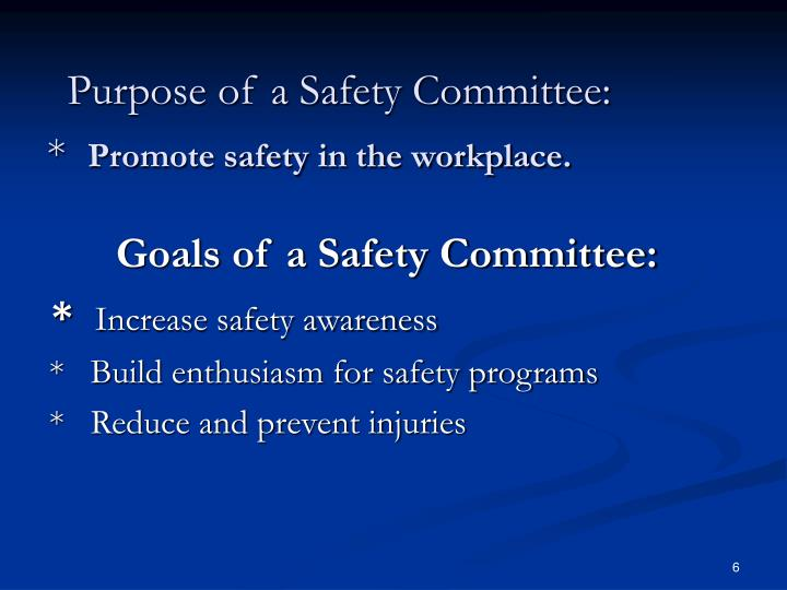 Purpose of a Safety Committee: