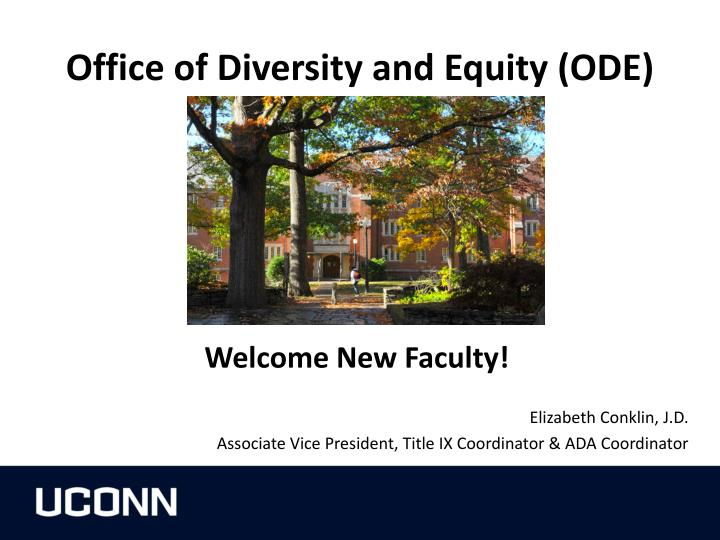 office of diversity and equity ode n.