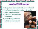 weeks 21 24 weeks
