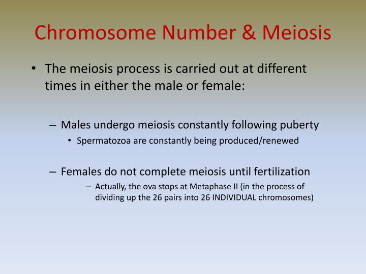 Chromosome Number & Meiosis