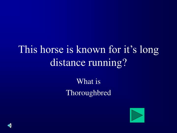 This horse is known for it's long distance running?