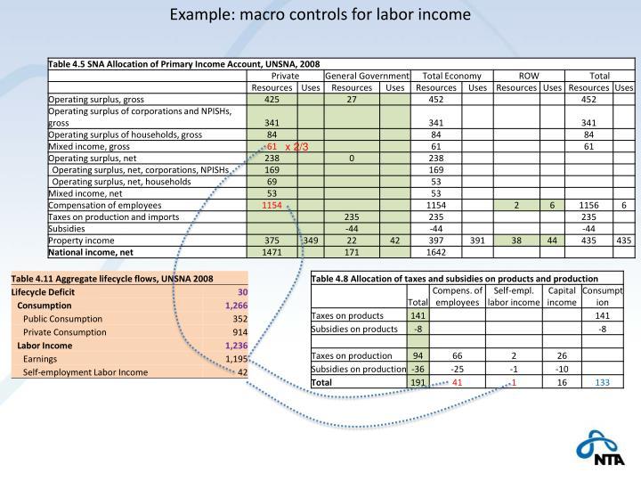 Example: macro controls for labor income