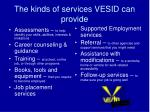 the kinds of services vesid can provide