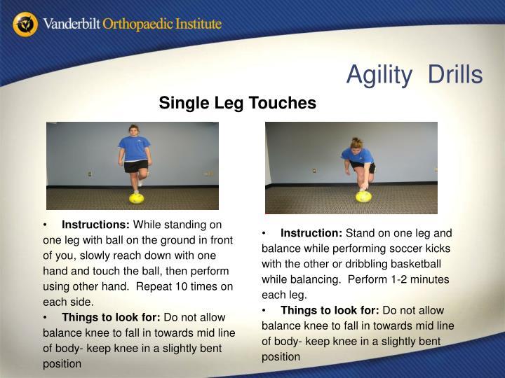 Single Leg Touches