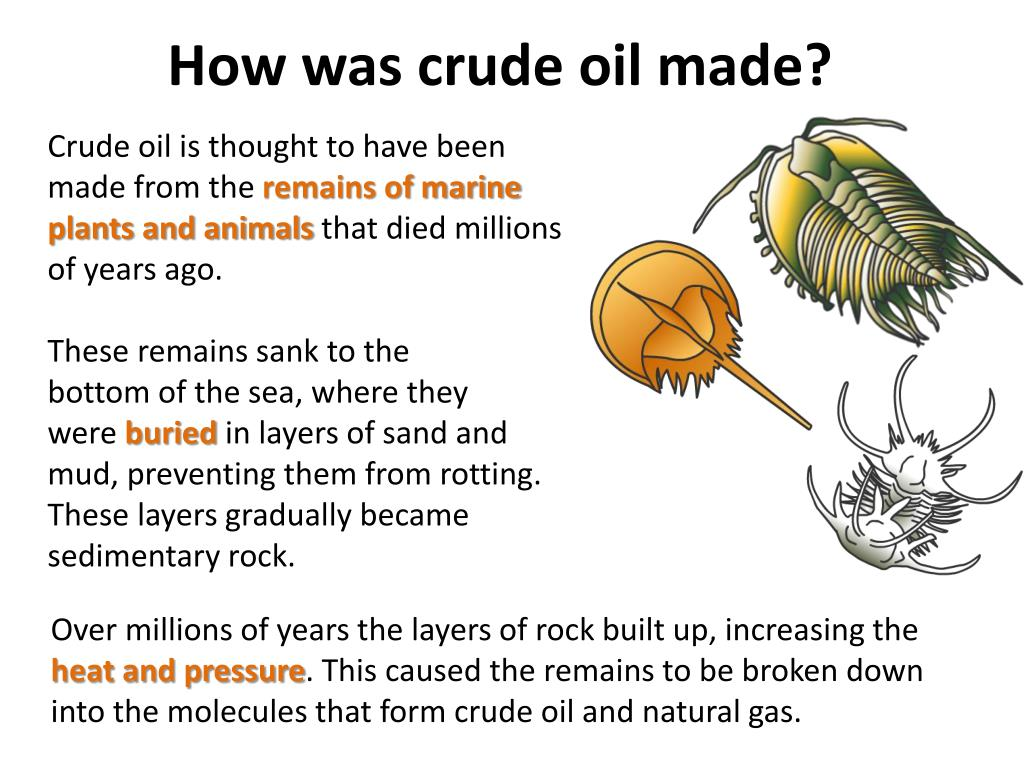 PPT - Hydrocarbons from Crude oil PowerPoint Presentation