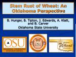 stem rust of wheat an oklahoma perspective