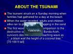 about the tsunami
