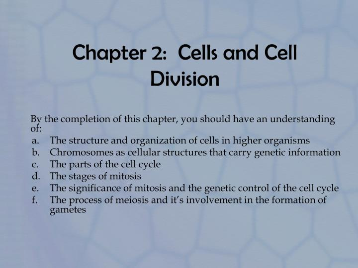 chapter 2 cells and cell division n.