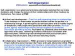 self organization pnm substation www parshift com files essays essay069 pdf