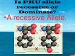 is pku allele recessive or dominate