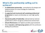 what is the partnership setting out to achieve