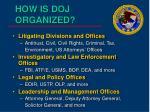 how is doj organized