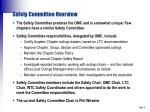 safety committee overview