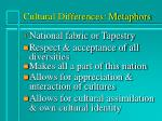 cultural differences metaphors2