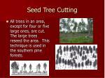 seed tree cutting