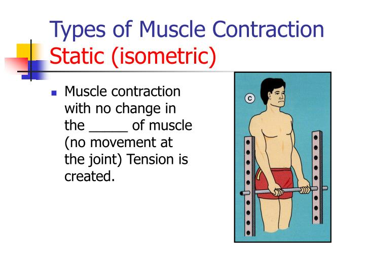 Muscle contraction with no change in the _____ of muscle (no movement at the joint) Tension is created.