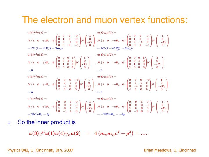 The electron and muon vertex functions: