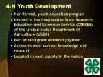 4 h youth development