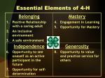essential elements of 4 h