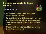 i pledge my hands to larger service