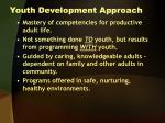 youth development approach1
