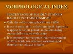 morphological index