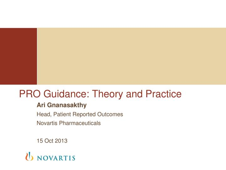 pro guidance theory and practice n.