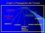 origen y propagaci n del tomate