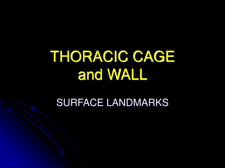 thoracic cage and wall n.