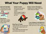what your puppy will need