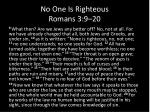 no one is righteous romans 3 9 20