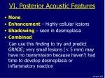 vi posterior acoustic features