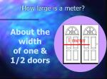 how large is a meter