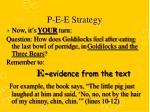 p e e strategy7